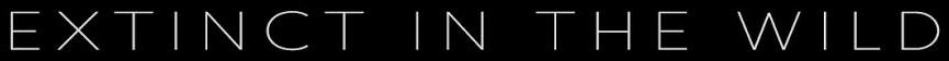 EITW - Logotype